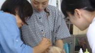 わんちゃんの爪切り。耳掃除などのコース。 楽しく授業しております~ お問い合わせは愛犬美容師会へお気軽にどうぞ。 初歩からわかりやすく !トリミングコースへの移行もできます。